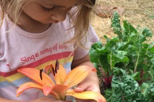 smelling flowers in the children's garden and outdoor classroom in Lorena, Tx.